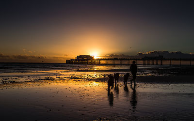 WorthingPier_Jan2016_164