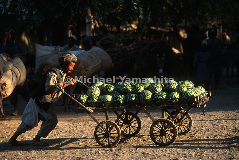 A watermelon-seller takes his goods to Taloqan market.