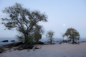 Beach, Chintheche, Malawi