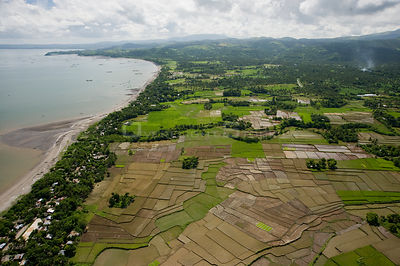 Aerial view of rice paddy fields and coast, Ocampo, Camarines Sur, Luzon, Philippines 2008