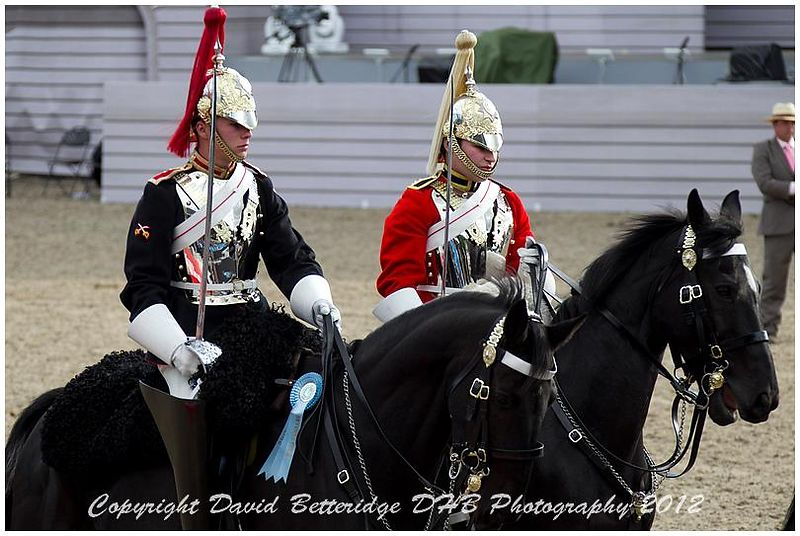royal_windsor_2012_DHB_0619