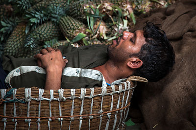 A worker sleeps in a basket next to a pile of pineapples at Crawford Market, Mumbai, India.
