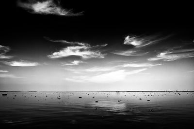 backwaters horizon