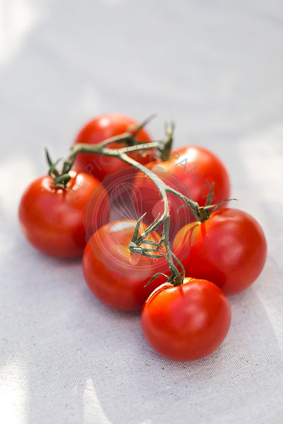 Vine Riped Tomatoes
