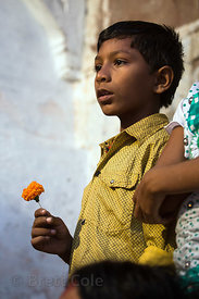 A boy holds a flower during the Kali Murti festival, Assi Ghat, Varanasi, India