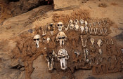 Hunter's shrine, monkey skulls, Teli village, Dogon Country, Mali