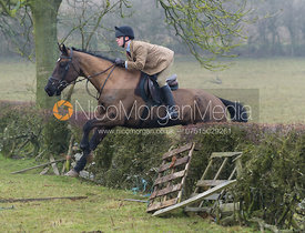 Followers jumping a hedge near Owston Wood
