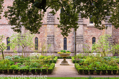 The East Garden laid out with beds of herbaceous perennials, roses and apple trees edged with euonymus hedging at the Bishop'...