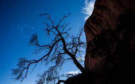 Arches_National_Park_258