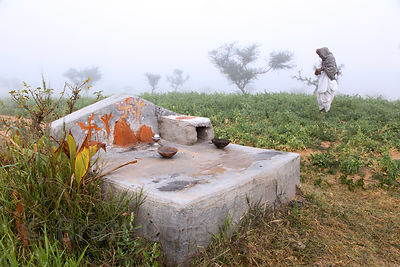 Small altar in a field of mutter (peas), Nagaur village Rajasthan, India