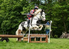 Crabbet Park - Class 1 (14th May 2017)