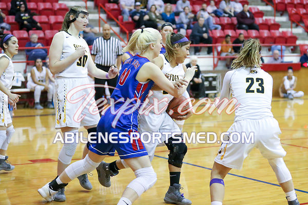 02-13-18_BKB_FV_Graham_v_Snyder_Bi-District_Playoffs_MW03161