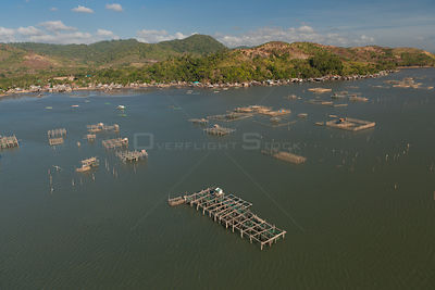 Aerial view of large numbers of fish pens choking Malampaya Sound, habitat of the highly endangered Irrawaddy dolphin, Palawa...