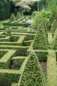 Geometric knot garden of box framed within yew walls, with central basket pond from the Great Exhibition of 1851. Bourton Hou...