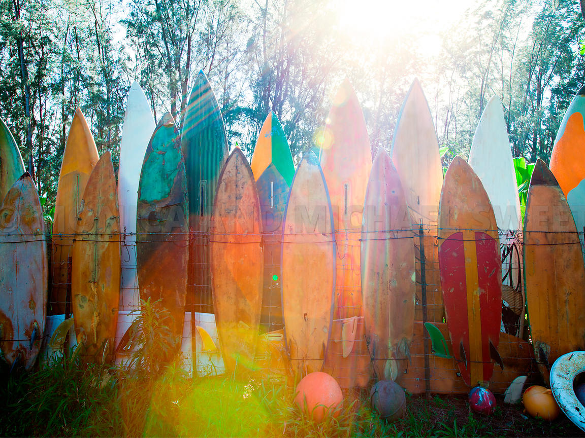 sunflare surfboards