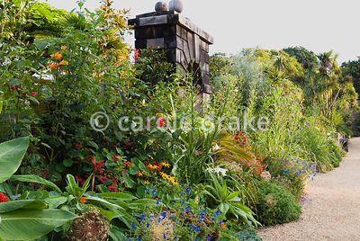 Exotic planting in the Collector Earl's Garden, designed by Julian and Isabel Bannerman, includes echiums, monardas, salvias,...