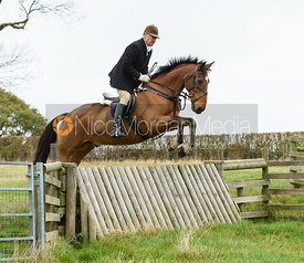 Peter Cooke jumping a hunt jump near Peake's. The Cottesmore Hunt at Somerby