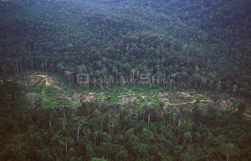 Aerial view of deforestation in the last lowland forest, Khao Pra-Bang Khram WS, Thailand