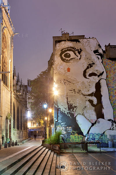 Paris Silence? - Wall Art