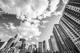 Charlotte Skyline Wide Angle Black and White Photo