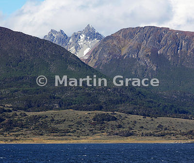Mountains and Nothofagus forest of Tierra del Fuego north of the Beagle Channel, Tierra del Fuego, Argentina