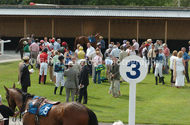Wide shot of parade ring