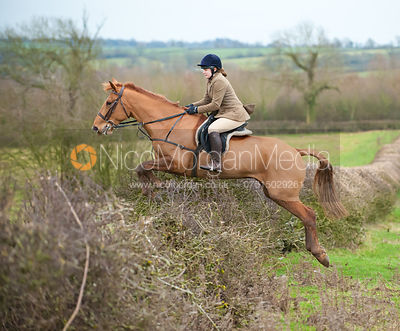 Florrie Mayo - Members of the field jump a hedge near Braunston