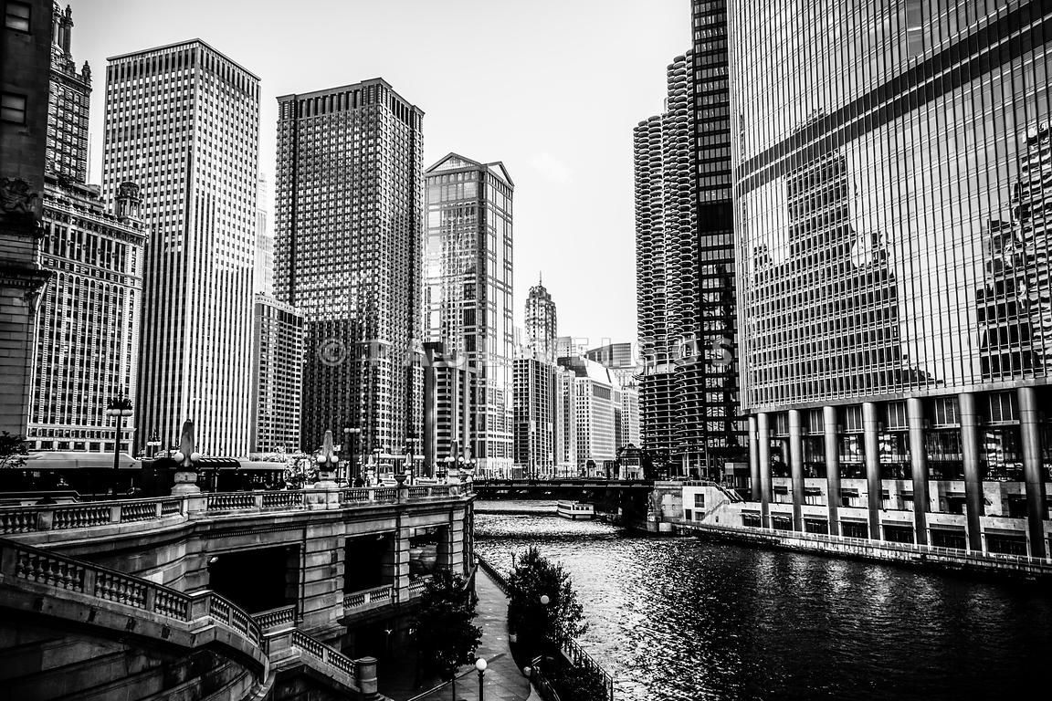 Chicago River Buildings Black and White Picture
