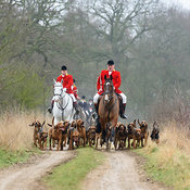 Cranwell Bloodhounds photos