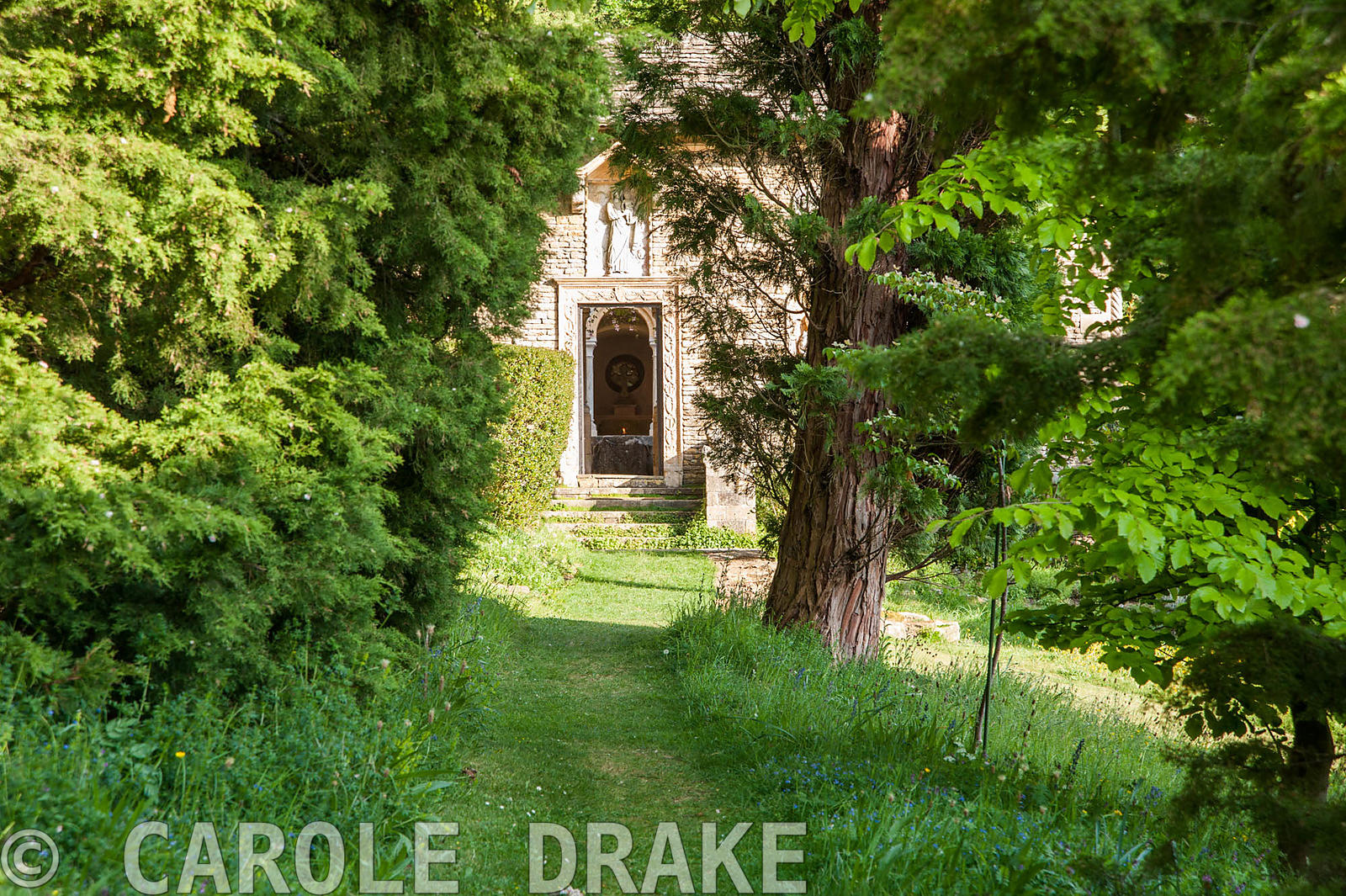 Grassy path between trees leads to the Cloisters. Iford Manor, Bradford-on-Avon, Wiltshire