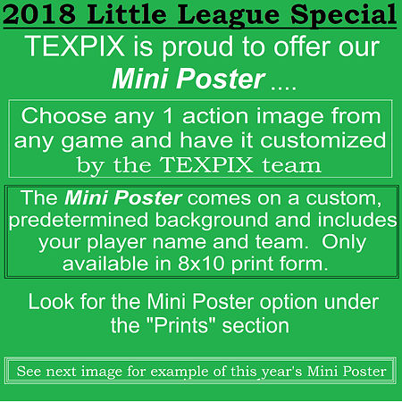 Mini_Poster_option