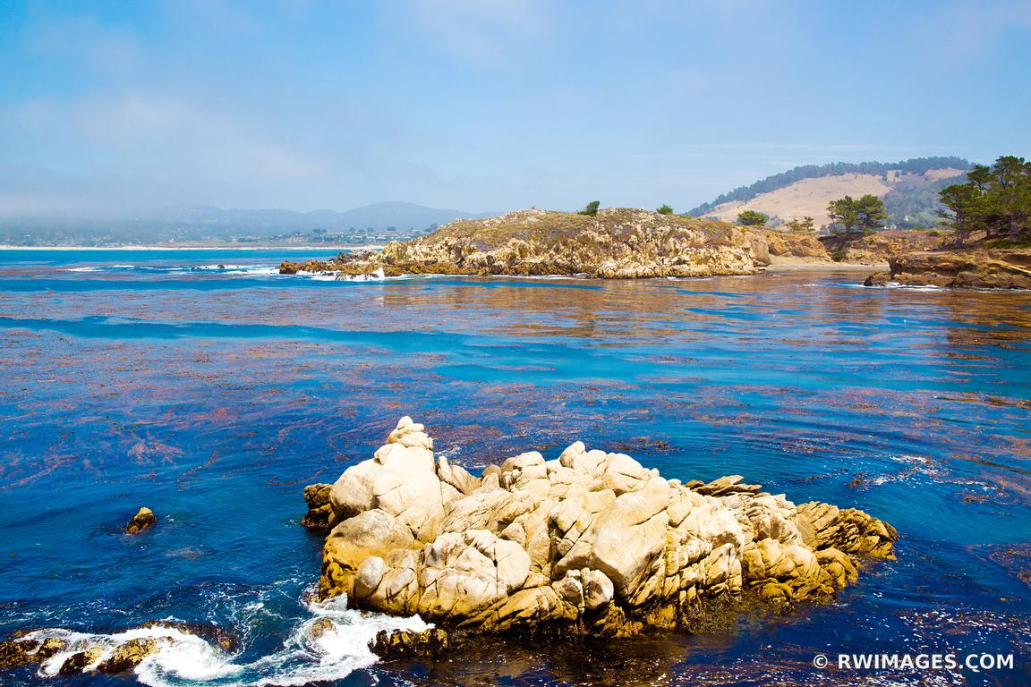 POINT LOBOS CALIFORNIA