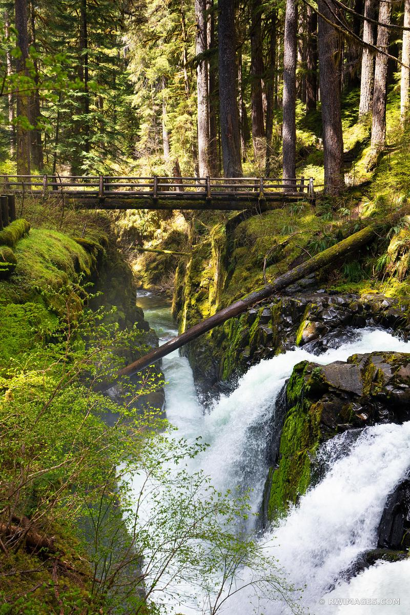 SOL DUC FALLS OLYMPIC NATIONAL PARK WASHINGTON COLOR VERTICAL