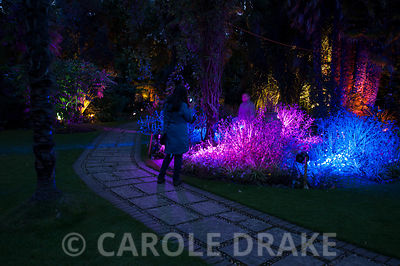 Visitors enjoy the Victorian garden illuminated.