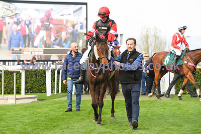 Uno_Mas_winners_enclosure_17042019-3