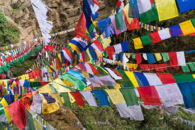 Prayer flags near Paro Taktsang in Bhutan.