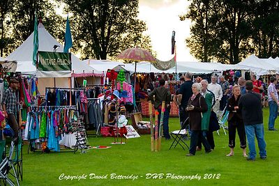 village_pump_festival_2012_friDHB_0096