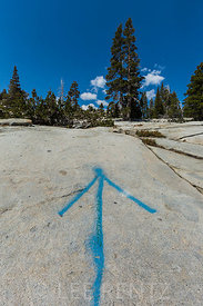 Blue Arrow Trail Marker in the Desolation Wilderness