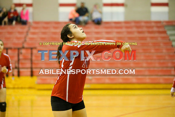 09-26-17_VB_FFrosh_Jim_Ned_White_v_Coahoma_MW00864
