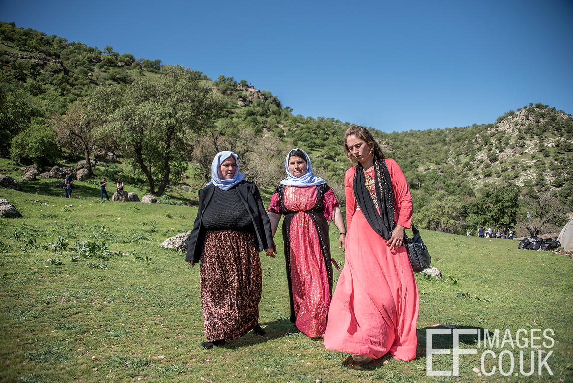 Traditionally Dressed Yezidi Women Walking Through A Field On Red Wednesday, Yezidi New Year, On Their Way To A Picnic In The...
