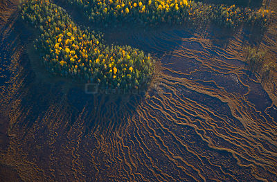 Aerial view of taiga forest and peat wetlands in autumn, Rovaniemi, Laponia, Finland, September 2007