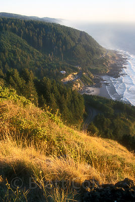 Oregon Coast looking south from the Cape Perpetua Bluff, the highest point on the Oregon coastline.