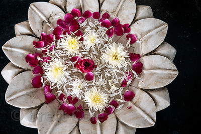 Lotus shaped marble dish with flowers, Udaipur, Rajasthan, India