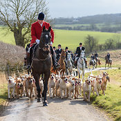 The Cottesmore Hunt at Newbold 16/2