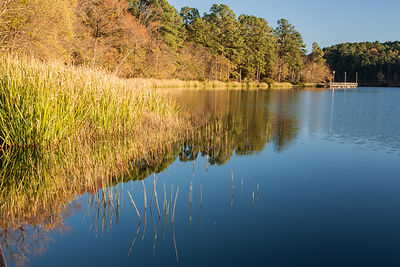 Tyler State Park Lake Relections