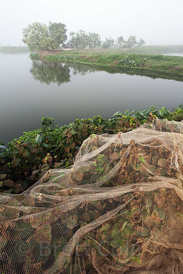 Fishing nets are spread out along a dirt trail in the East Kolkata Wetlands, Kolkata, India.