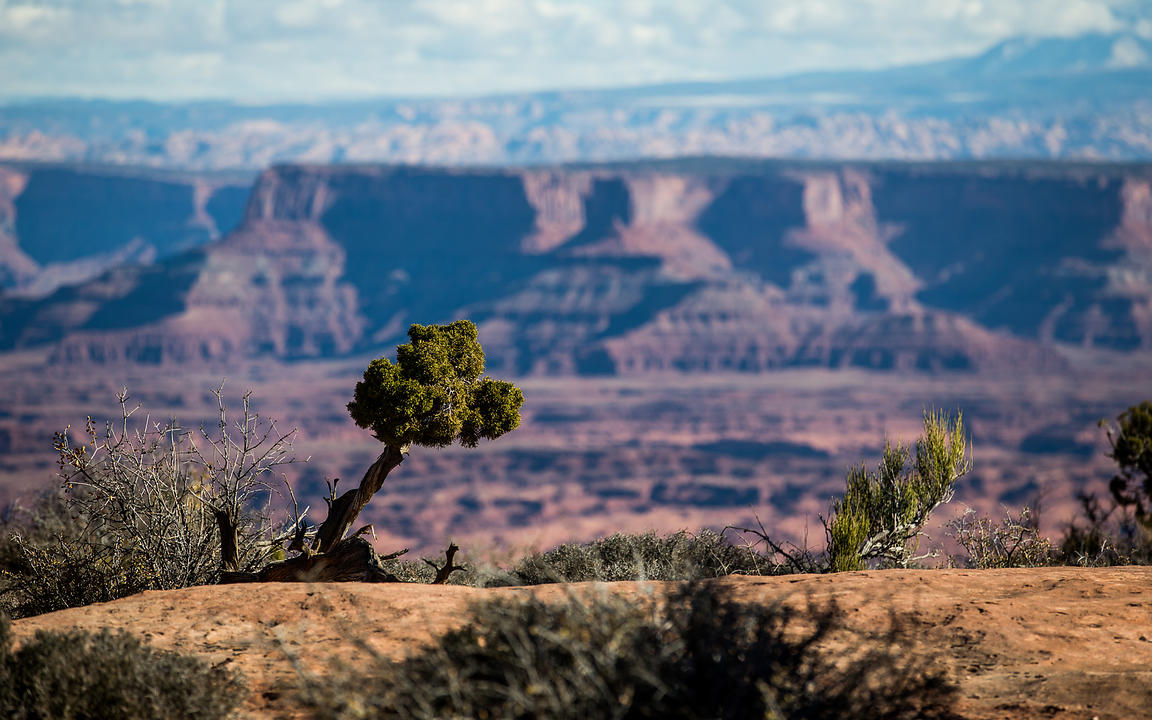 Canyonlands_National_Park_473