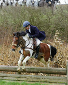 Harriet Walker jumping a hunt jump near Peake's Covert