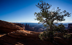 Canyonlands_National_Park_213