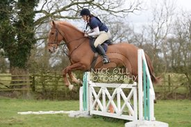 bedale_hunt_ride_8_3_15_0018